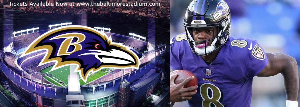 Baltimore Ravens MT&T bank stadium